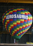 Aerosaurus Flights Balloon
