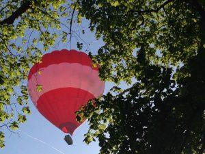 red hot air balloon through trees